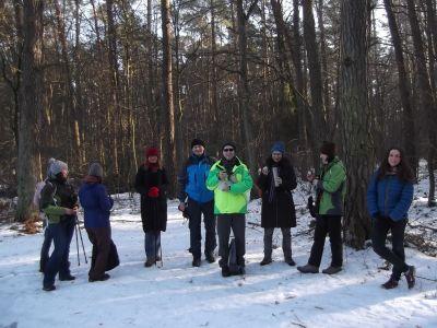 Lasy Chojnowskie, spacer dla wszystkich!